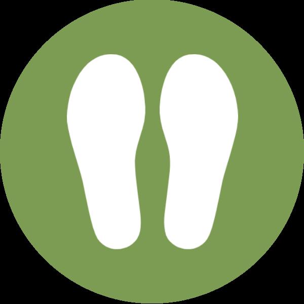 Einlagen Illustration grün weiß